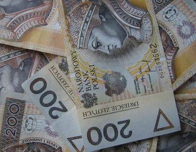 Ministerstwa wydają setki tysięcy na... ogłoszenia w prasie