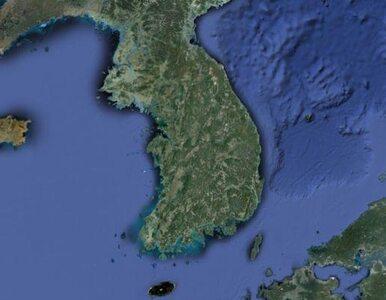 """""""Korea Północna więcej szczeka, niż gryzie"""""""