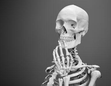 Pierwsze wszczepienie nowatorskiego implantu przewodnictwa kostnego