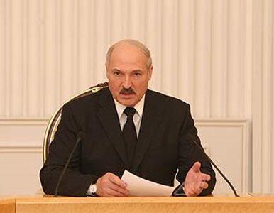 Litwa: nic nie wiemy o bombardowaniu Białorusi pluszowymi misiami