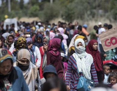 Migranci na greckich wyspach. Kraje UE boją się wysyłać tam urzędników