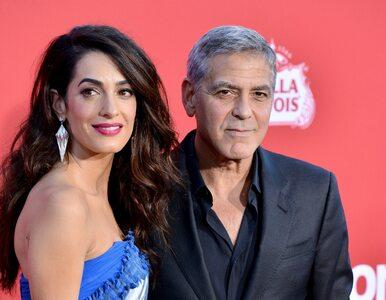Awantura na imprezie George'a Clooneya. Celebrytka pobiła aktora?