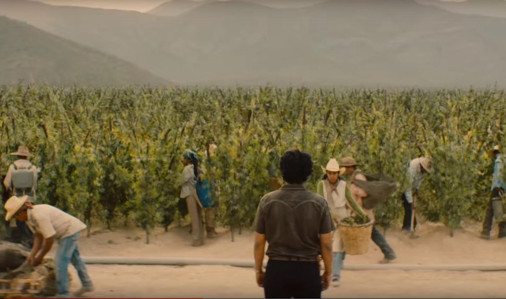 "Kadr ze zwiastuna ""Narcos:Meksyk"""