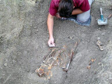 Archeolodzy odkryli germańskie cmentarzysko w Wierzbiczanach