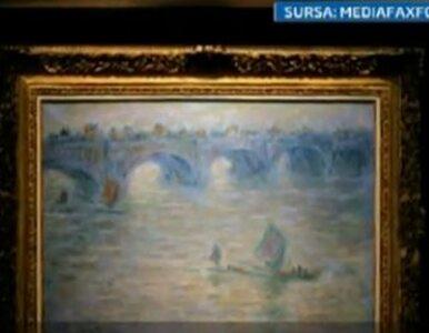 Rumunka spaliła w piecu obrazy Picassa i Moneta? Są dowody