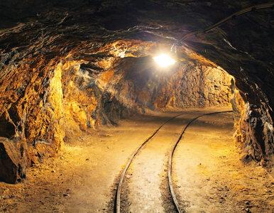 """""""Musimy zejść głębiej"""". Poszukiwacze """"złotego pociągu"""" zapowiadają..."""
