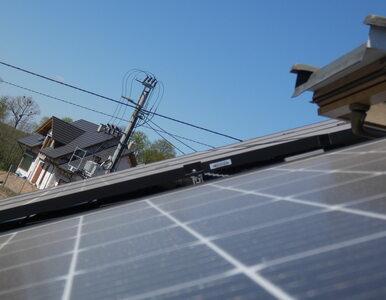 Enea: Coraz więcej możliwości dla energii ze źródeł odnawialnych