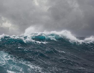 Nawet 10 w skali Beauforta. IMGW ostrzega przed sztormem na Bałtyku