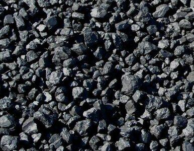 Były wiceminister: Zatykamy się polskim, niezbywalnym węglem