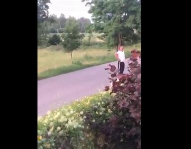"""""""Dzieci będziesz pedaliła?"""". Policja prowadzi postępowanie ws...."""