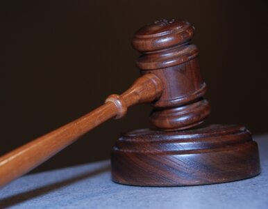 Wniosek Karadżicia odrzucony. Nie będzie nowego procesu