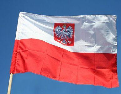 Niemiecka Polonia zakłada partię