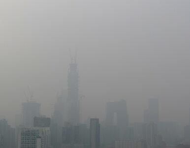 Policja będzie walczyć ze smogiem. Ma karać m.in. za rozpalenie grilla