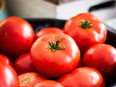 Jeden pomidor dziennie może zmniejszyć ryzyko wystąpienia raka skóry