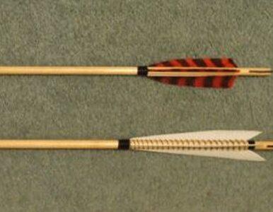 Wyrok w zawieszeniu za zabawę w Robin Hooda