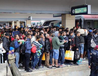 Czekając na nową falę. W tym roku do bram Europy zapuka więcej migrantów...