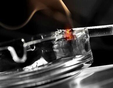 Zakazano palenia w kawiarniach, ale palacze z papierosów nie zrezygnowali