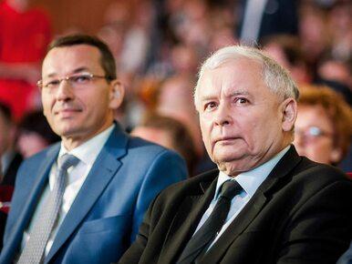 Morawiecki premierem? Wiceprezes PiS: Jeśli Kaczyński się nie zdecyduje