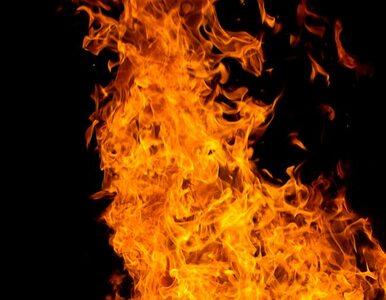 Gigantyczny pożar. Setka strażaków walczy z ogniem