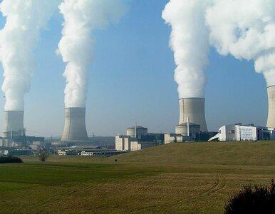 Niemieckiego atomu na Wyspach nie będzie