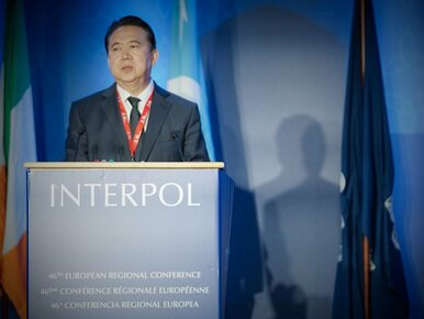 Chińczycy aresztowali szefa Interpolu