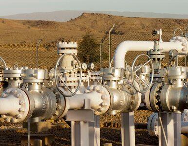 PGNiG wydobywa gaz w Pakistanie, szuka w Emiratach