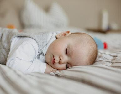 Dietetyk o żywieniu niemowląt: 1000 pierwszych dni ma fundamentalne...