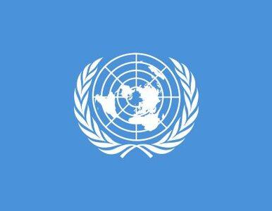 ONZ opublikował raport o okrucieństwach Korei Północnej