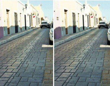 Widzisz dwa różne zdjęcia? Lepiej dobrze się przypatrz, ta iluzja...