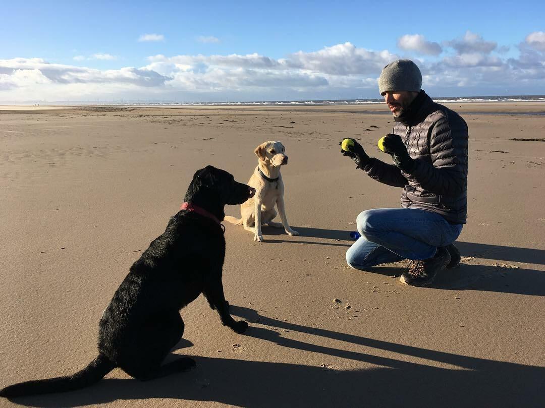 Andrew Cotter z psami