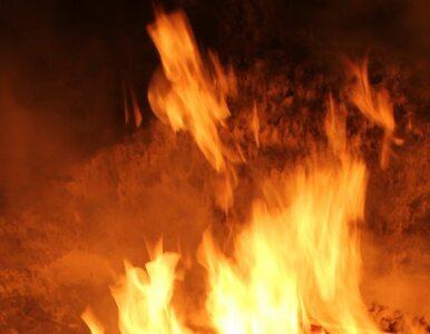 Znaleziono ciało kobiety. Jej chłopak podpalił las