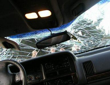 Jaguar uderzył w drzewo. Dwie osoby zginęły