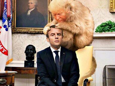 Internauci żartują z wizyty Macrona w USA. Zabawne sytuacje podsumowali...