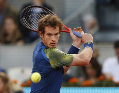 Wygrał Wimbledon - zostanie szlachcicem?