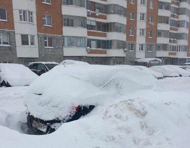 """""""Arktyczna inwazja"""" w Moskwie. Stolica Rosji sparaliżowana przez śnieg"""