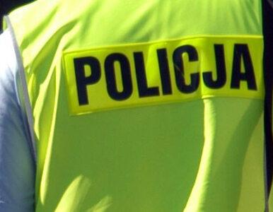 Warszawa: odnaleziono zaginionych chłopców