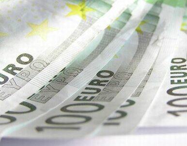 Zapraszają polskich inwestorów na swój rynek. Do wzięcia miliardy euro