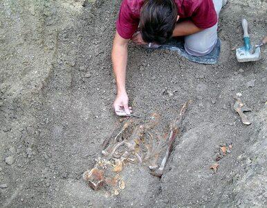 Oprócz znalezisk archeolodzy natrafili na ślady księdza-badacza