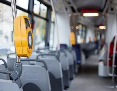 W specjalnych tramwajach dowiesz się, jak kochać się bezpiecznie