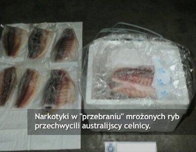 Heroina i metamfetamina w mrożonych rybach. Rekordowy połów celników z...