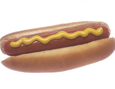Udławił się hot dogiem i zmarł. Bił rekord w...