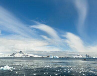 Topniejący lodowiec odsłonił pięć nowych wysp. Czekają na nadanie im nazw