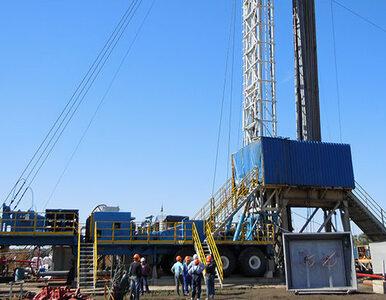 Serinus produkuje już niemal milion m sześc. gazu dziennie