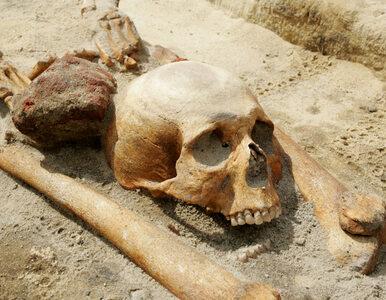 """Kto leży na """"przeklętym cmentarzu"""" w Gliwicach?"""