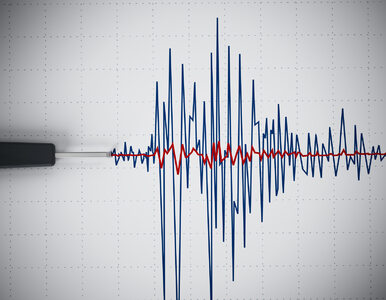 Silne trzęsienie ziemi w Indonezji. Władze ostrzegają przed tsunami