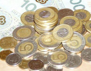Polacy zarabiają więcej, ale kupić mogą... mniej