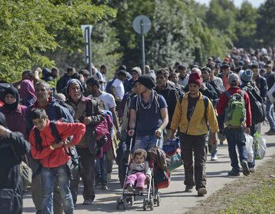 Niemiecki dziennik: U bram Europy czeka 6,6 mln uchodźców