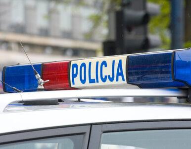 Rośnie korupcja w policji. Ujawniono niepokojące dane