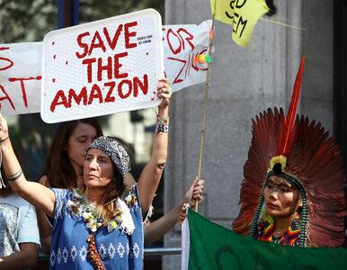 Politycy żerują na płonącej Amazonii