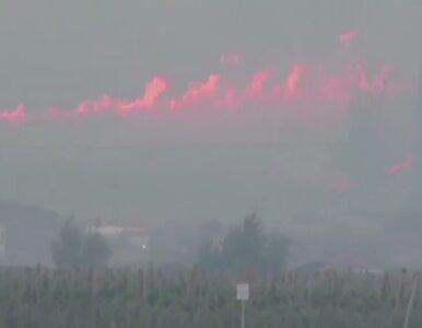 Ogromny pożar w stanie Waszyngton. Ogień strawił ponad 70 budynków